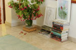 Blue_green_red_decor_picture_and_book